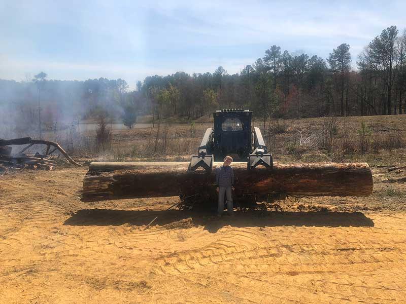 log removal
