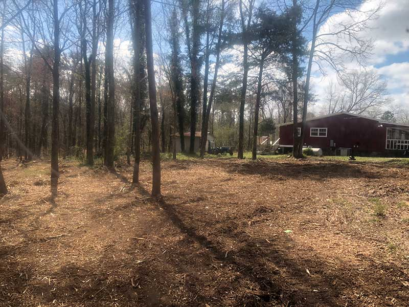 forestry mulching after